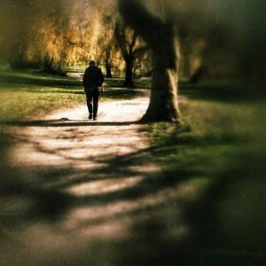 da2e1-shadows